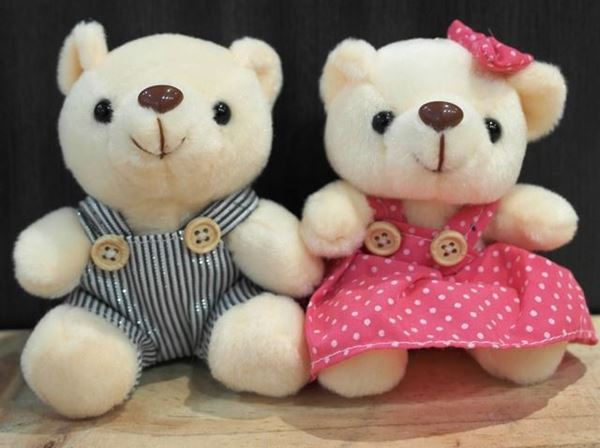 Picture of ST013 - Couple Bear