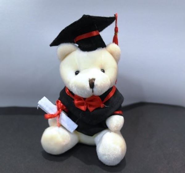 Picture of ST030 - Graduation Bear